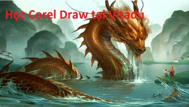 học Corel Draw